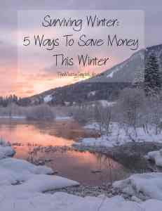 Surviving Winer: 5 Ways To Save Money
