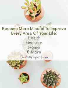 Use Mindfulness To Improve Every Area of Your Life