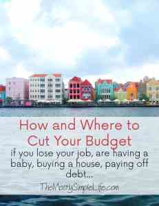 how and where to cut your budget