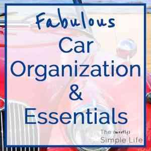 Fabulous Car Organization & Essentials