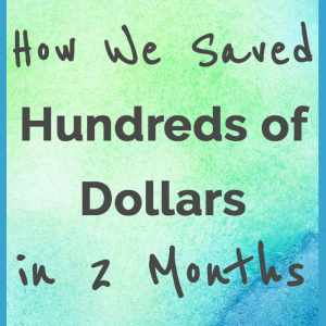 How We Saved Hundreds of Dollars in 2 Months
