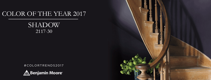 color-of-theyear-2017-benjamin-moore-shadow-by-flanagan-paint-and-supply
