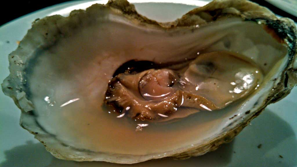 Oh Shucks! Raised on the Atlantic side of Virginia's eastern shore, Chincoteague Oysters are a full flavored oyster that pack an extremely salty punch.   TheMountainKitchen.com