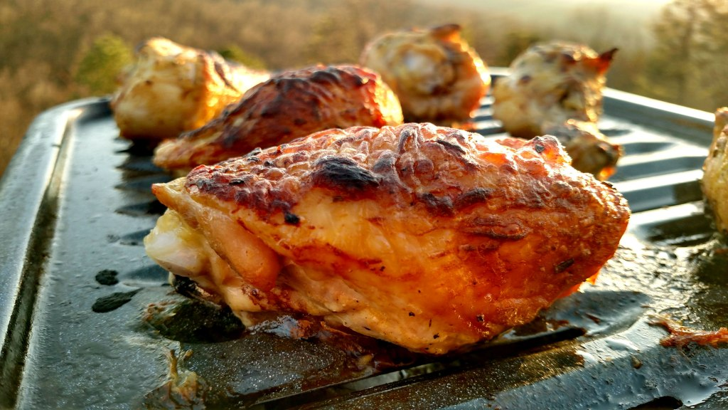 Zesty Broiled Chicken | Turn plain broiled chicken into a tangy sensation! This Zesty Broiled Chicken is quick and delicious to make. Tender juicy chicken basted in mustard glaze with lemon juice, fresh rosemary and garlic. Perfect for a weeknight meal with very little effort. | TheMountainKitchen.com