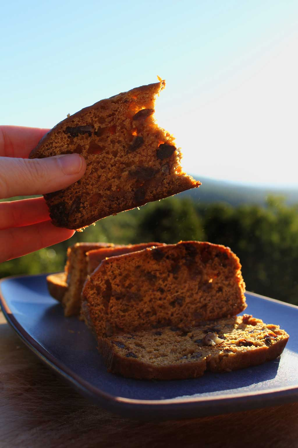 Flavorful and moist, this pumpkin cinnamon bread is bursting with fall pumpkin flavor inevery bite. This easy recipe should be on your fall bucket list! | TheMountainKitchen.com