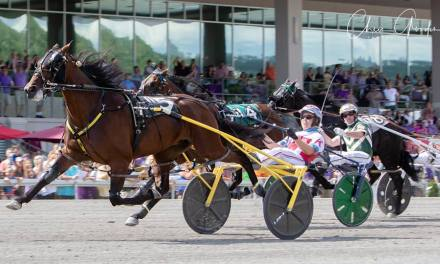 Dorsoduro Hanover gets Adios win for local connections