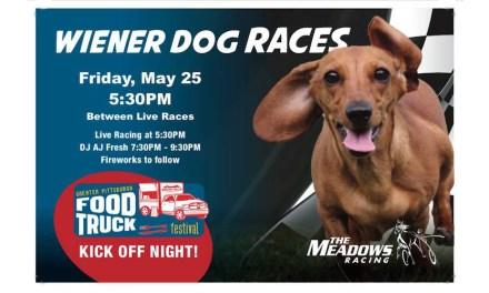 Wiener Dog Races, Fireworks set for Friday