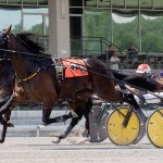 Father Nuno wins debut in Meadows PASS