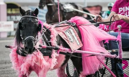 Meadows morphs into county fair for Saturday's Fair Finals, Pink Out
