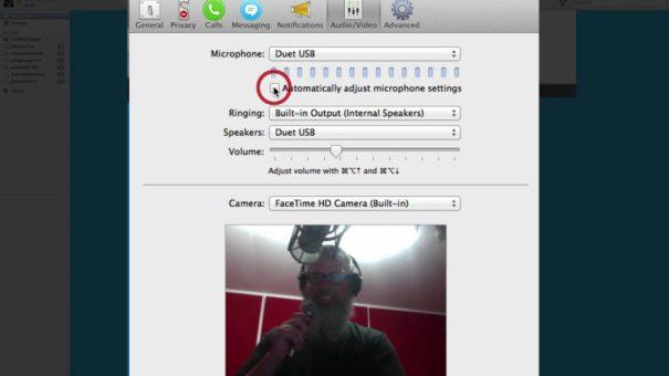 Skype Preferences closeup
