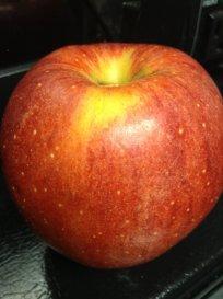 apple breakfast