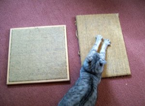 Horizontal Scratcher - cat scratching ideas