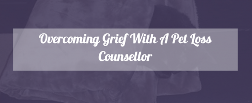 Overcoming grief with a pet loss counsellor on The Mummy Toolbox