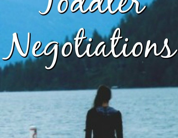 How to stage toddler negotiations - the best tips and tricks of dealing with toddlers