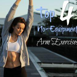 Top 4 no equipment arm exercises