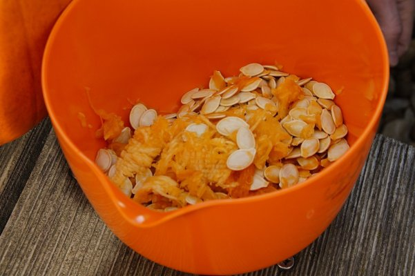 pumpkin seeds in a bowl - 5 fun uses for pumpkins this fall