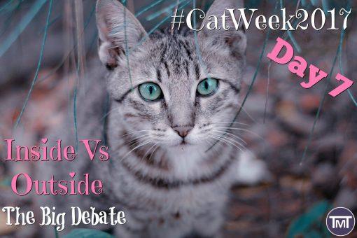 inside vs outside the big debate