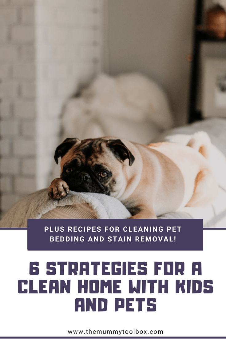Struggling to get a clean home? Here are some useful strategies when you have the chaotic combination of kids and pets to clean up after. #parenting #cleanhome