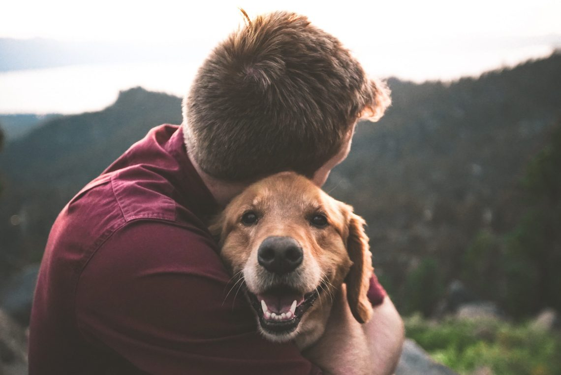 illnesses you can transfer to your pet feature image. Man facing away from camera hugging a golden retriever with landscape in the background