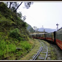 Kalka-Shimla Toy train journey !