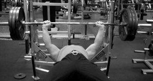 315 lb Bench Press