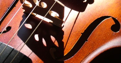 Essential Ingredients For Learning A Musical Instrument