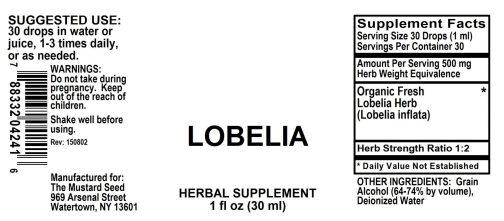4004241 Lobelia Liquid Extract
