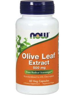 Now Olive Leaf 500mg