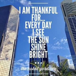 Thankful Thursdays