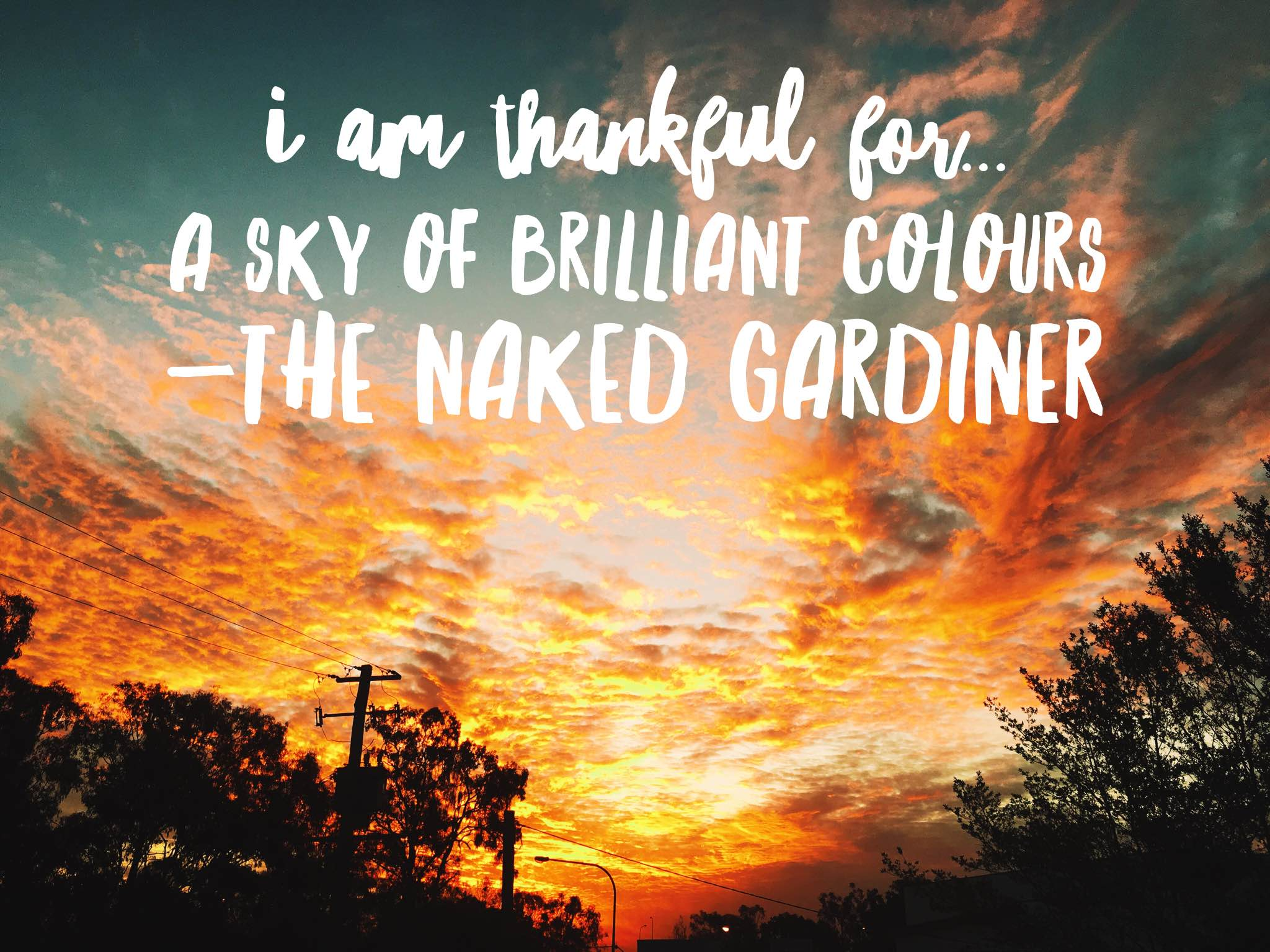 thankful-thursdays-a-sky-of-brilliant-colours-the-naked-gardiner