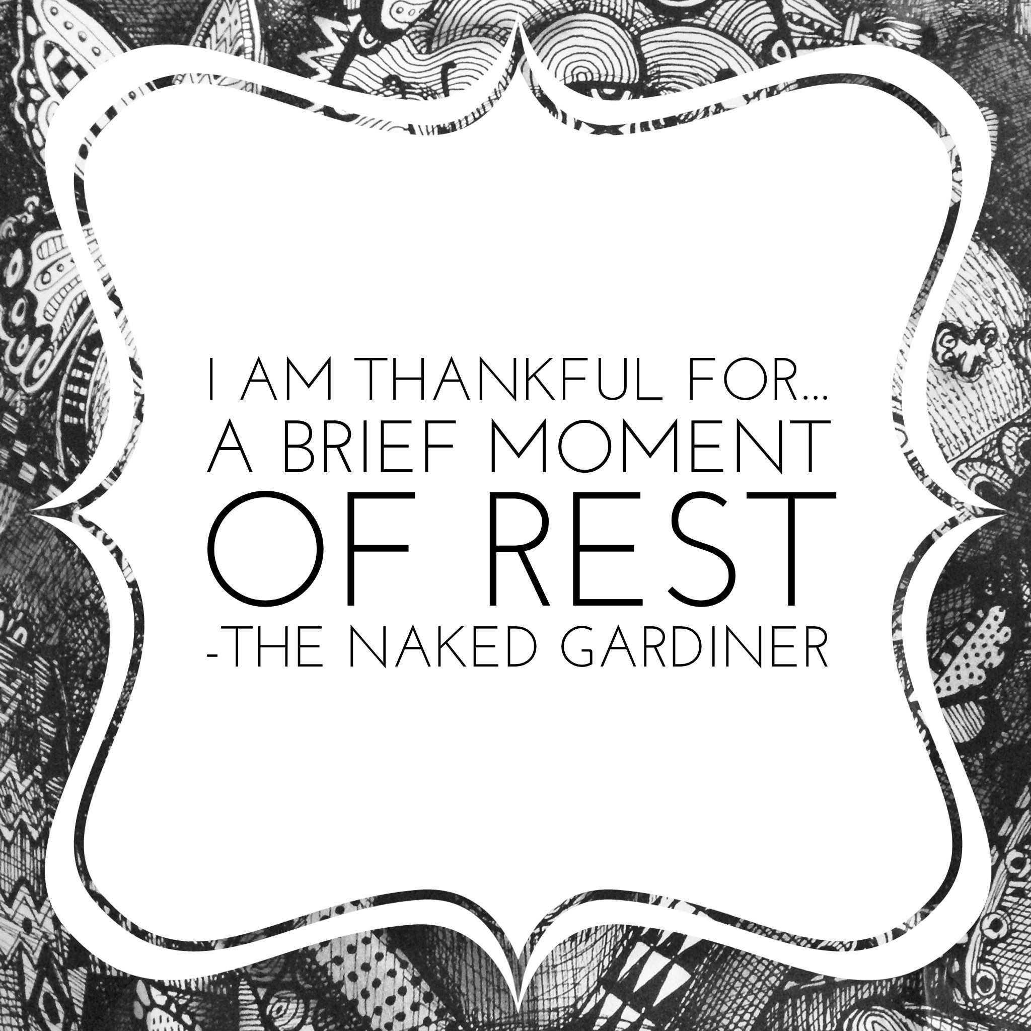 thankful-thursdays-brief-moment-of-rest-thenakedgardiner