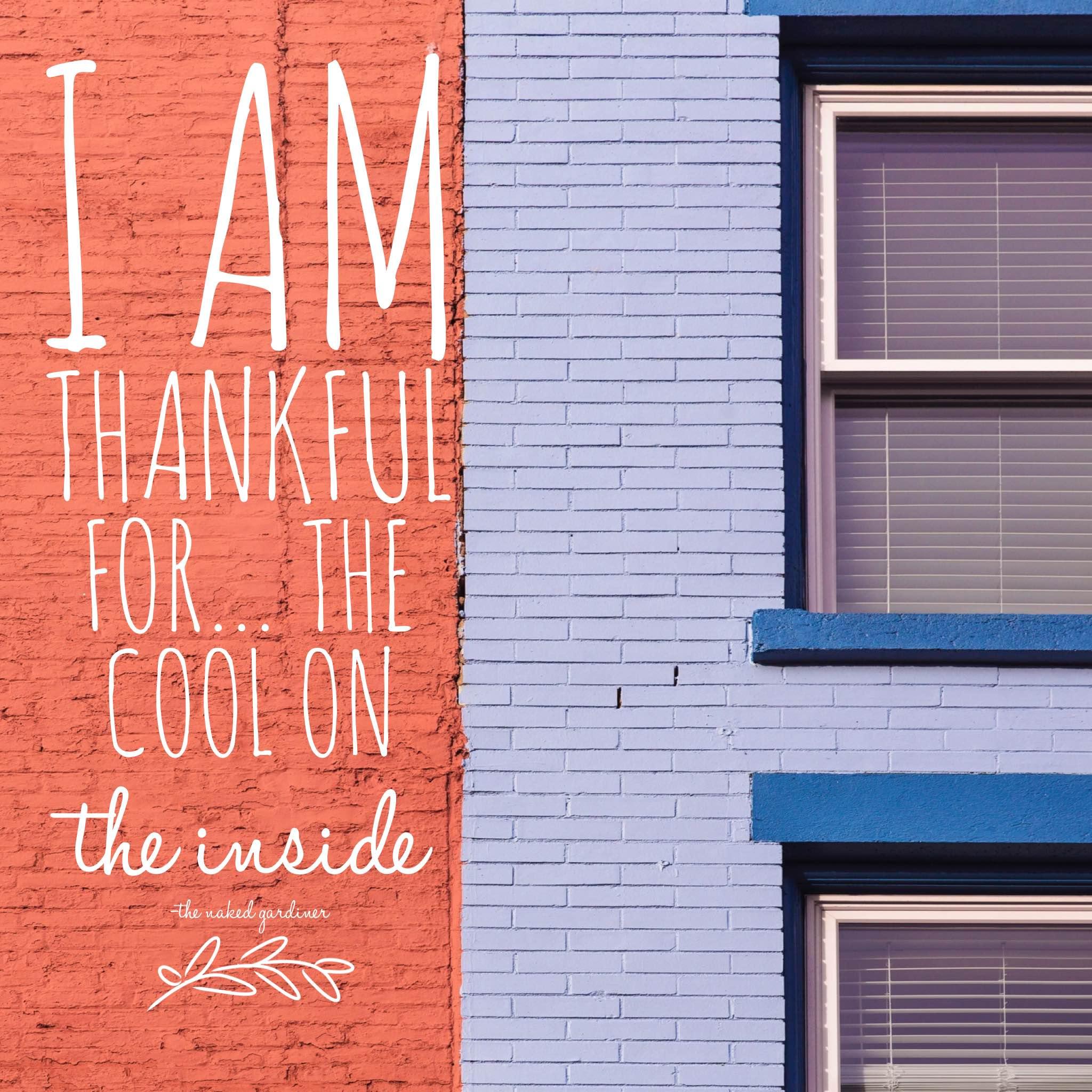 thankful-thursdays-cool-inside-thenakedgardiner