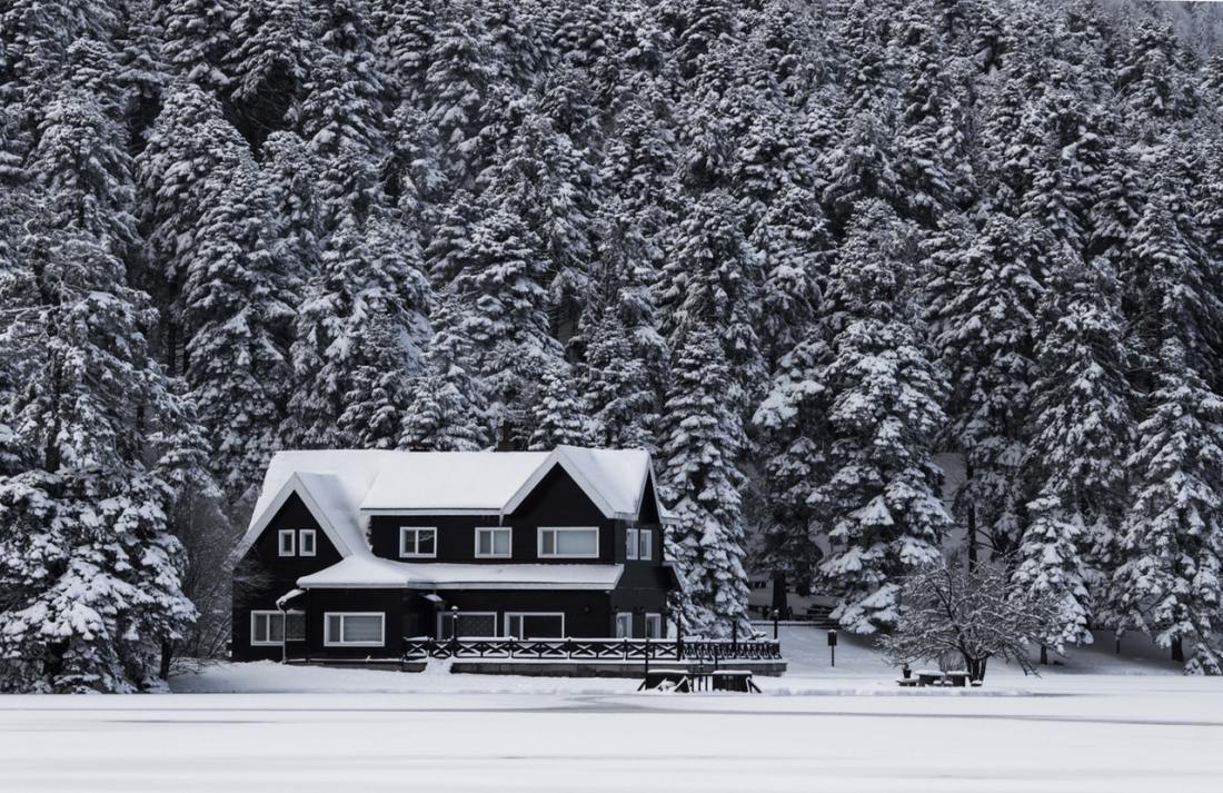 Snowy Home