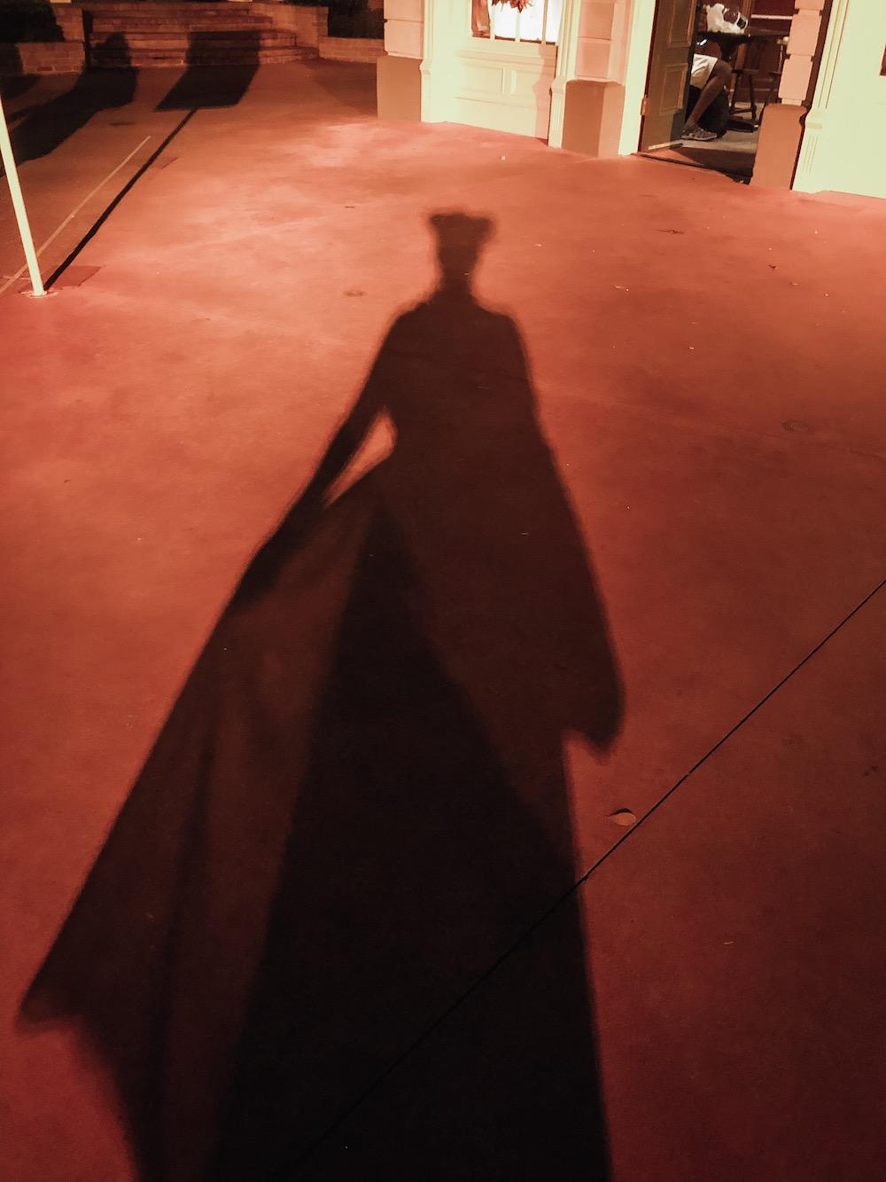 Maleficent Shadow at Disney World