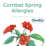How to Combat Allergy Attacks this Spring in Nashville