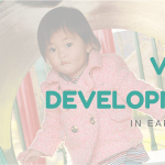 Vision Development in the Early Years
