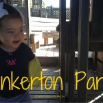 Pinkerton Park Review