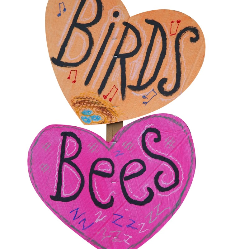 When should you tell your child about the birds and the bees?