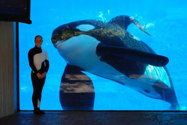 Penalty Upheld Against SeaWorld in Death of Trainer by