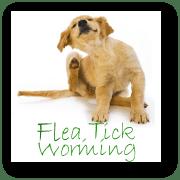 Flea, Tick, Worming