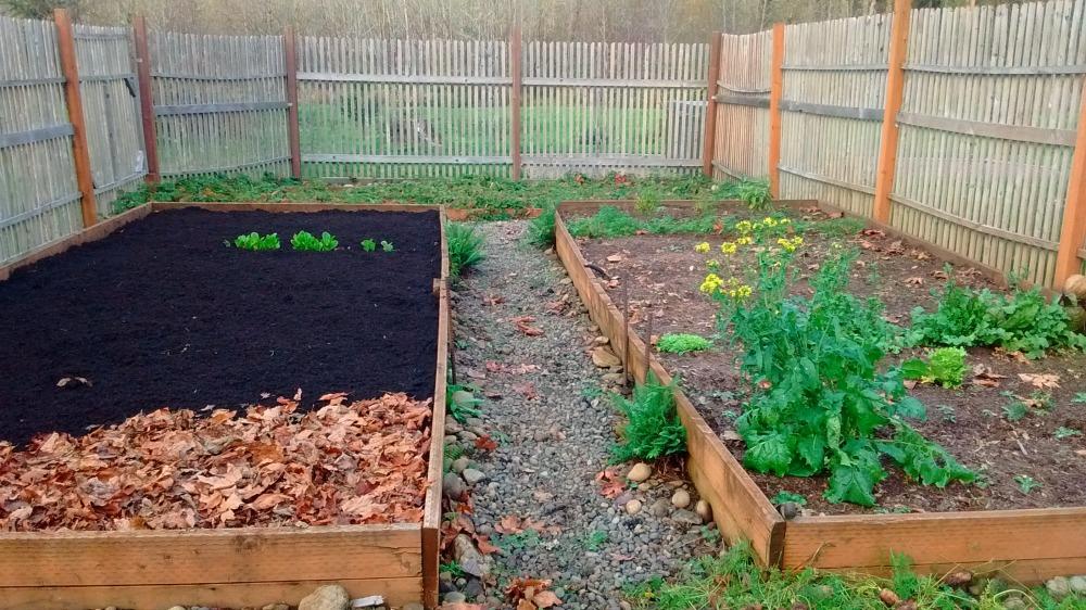 fall garden compost mulch