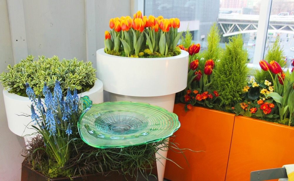Container garden with red and orange tulips