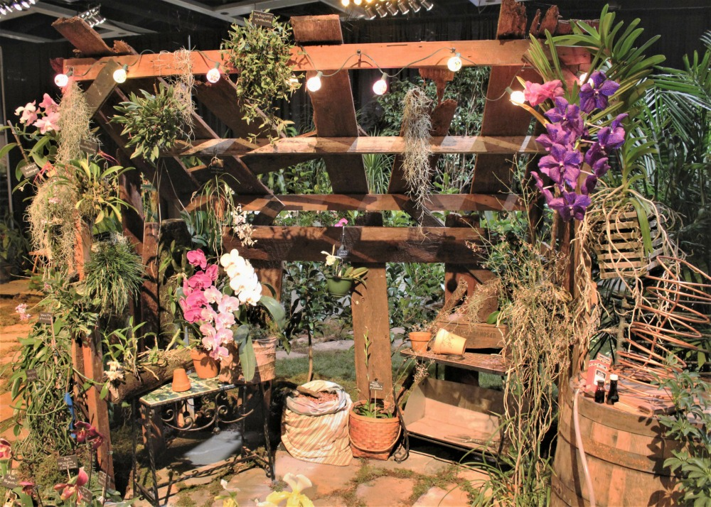 garden inspiration with orchids