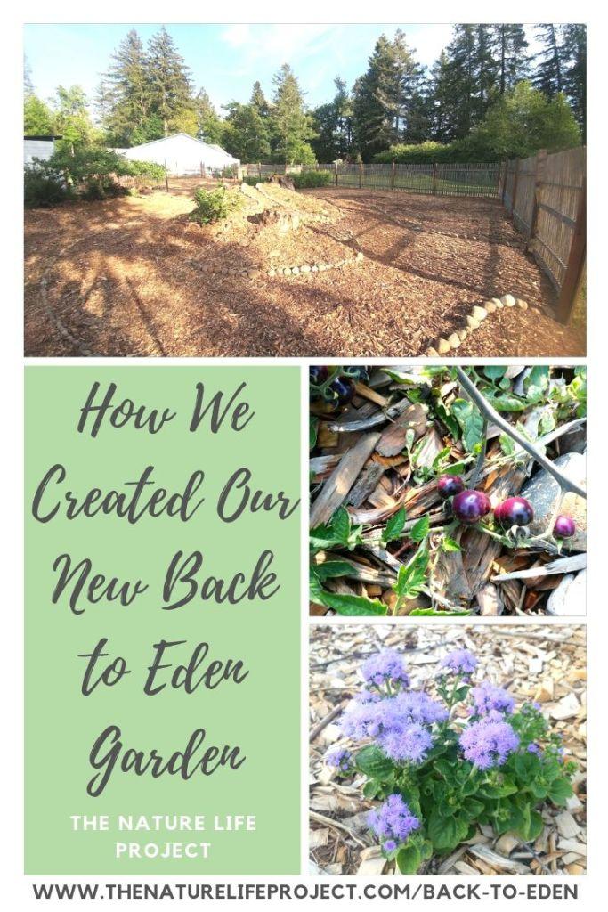 Our New Back to Eden Garden