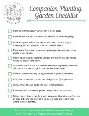 Companion Planting Checklist