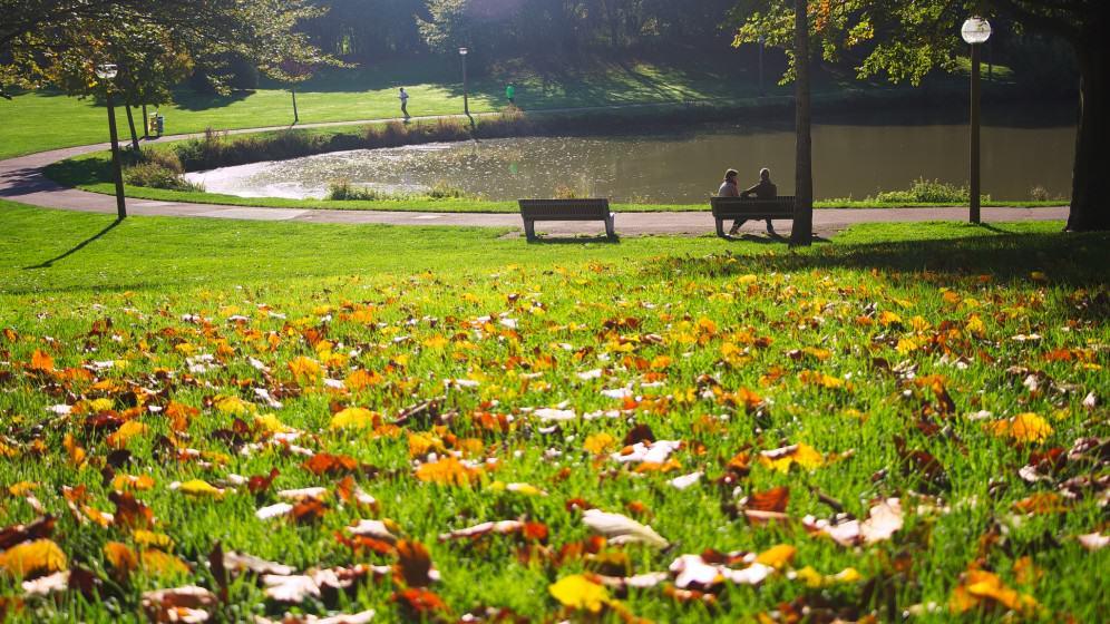 3) Urban Park. Credit Florent Lannoy