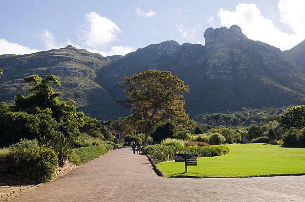 5) Kirstenbosch National Botanical Gardens, South Africa. Credit sat.greatstock.co.za