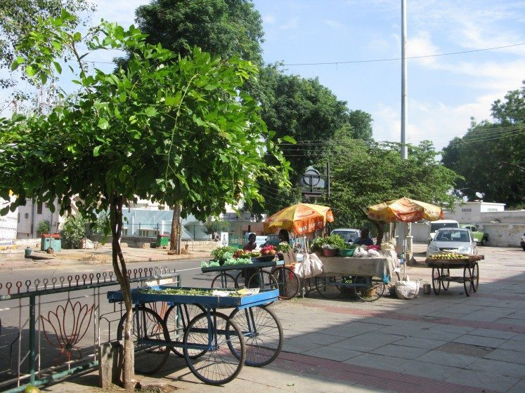 1. Trees provide shade for all, including vulnerable groups such as street vendors in Bangalore