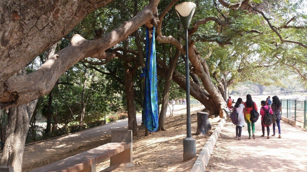8. A tree branch provides shade and shelter for a makeshift cradle, holding the sleeping child of a street vendor in a Bangalore park-1