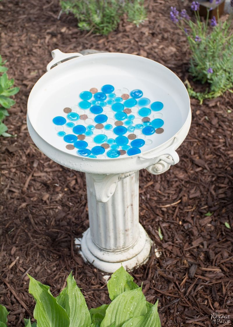 Diy Bird Bath The Navage Patch